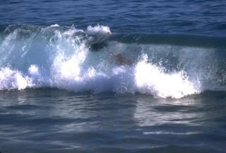 being fiercely hugged by a wave